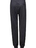 Мужские спортивные штаны в большом размере, фото 2