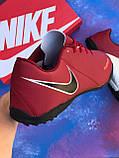 Стоноги Nike Phantom Vision / бампы / футбольна взуття / найк фантом /многошиповки, фото 3