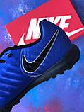 Стоноги Nike Tiempo Ligera IV TF многошиповки найк темпо тиемпо бампы лигера, фото 8