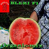 Семена, ранний, черный арбуз БЛЕЙК F1 / BLEKI F1, ТМ Libra Seeds (Голландия), 1000 семян, фото 3