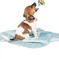 Плед для кішок і собак Pet Fashion BLISS м'ятний 77*100 см (PR241906)