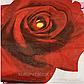 "Простынь-резинка 160х200  из бязи Голд ""Чайная роза"", фото 2"