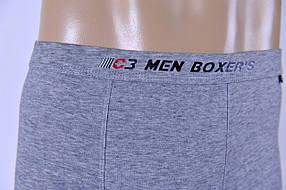 Мужские трусы - боксеры C+3 462 M  светло серый, фото 2