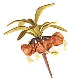 Ганутель. Квіти з ниток і дроту, фото 6