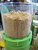Пророщувач кухонний зерна і насіння Green Vitamin, фото 3