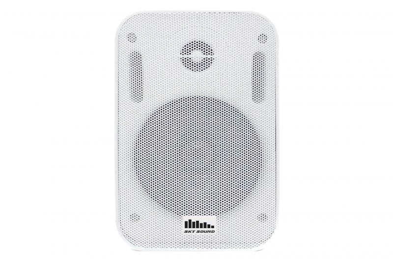 Настенная акустика SKY SOUND PM-2401W