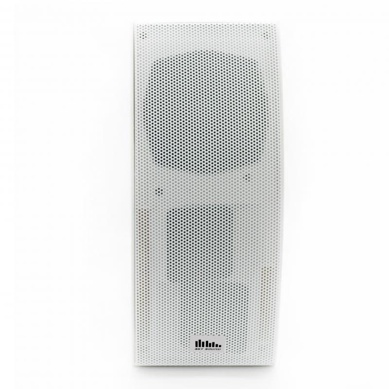 Настенная акустика SKY SOUND PM-5000W
