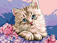 Картина рисование по номерам Babylon Милый котик VK118 30х40см набор для росписи, краски, кисти, холст