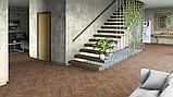 Линолеум напольный бытовой Tarkett Evolution Live Bavaria 3 для дома 3 м, фото 4