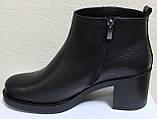 Ботинки деми женские на каблуке кожаные большого размера от производителя модель БР23БВ, фото 4