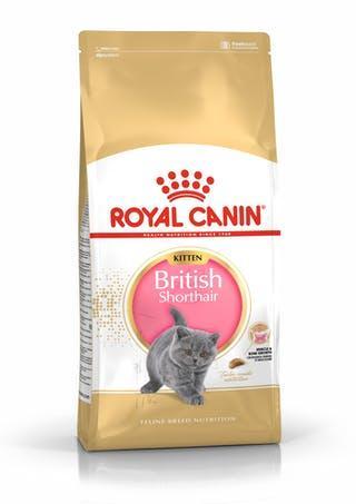 Корм Royal Canin Kitten British Shorthair Роял Канін для Британських короткошерстих кошенят 10 кг