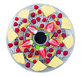 Сушилка для овощей и фруктов Concept SO-2020, фото 2