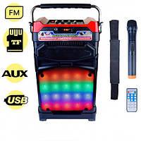 Радиоприёмник колонка NNS NS-1389 в виде чемодана с микрофоном, фото 1