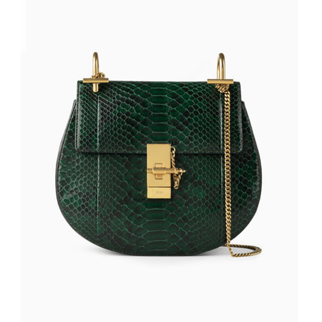 Chloe Drew bag in python and nappa lambskin intense green