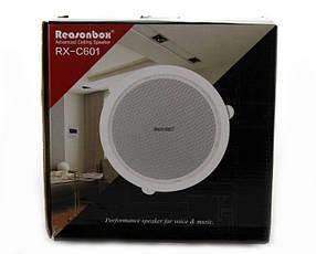 Потолочная акустика Reasonbox RX-C601   Колонки врезные 185 мм 15 ВТ, фото 2