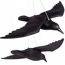 Ворон для отпугивания птиц Springos GA0128, фото 2