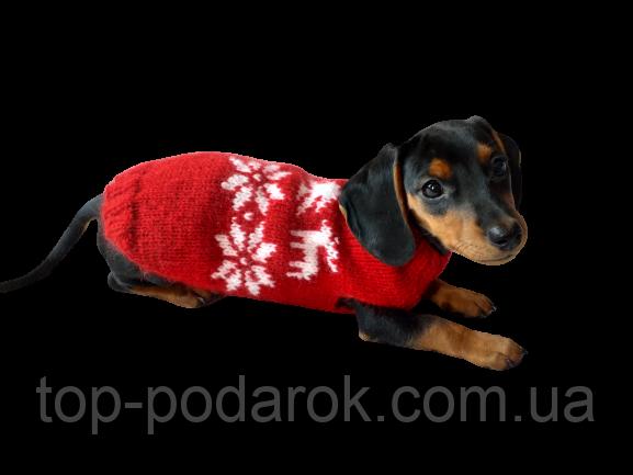 Новорічний светр для собаки з оленями та сніжинками