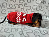 Новорічний светр для собаки з оленями та сніжинками, фото 7