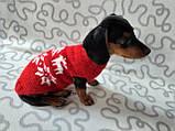 Новорічний светр для собаки з оленями та сніжинками, фото 2