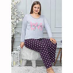 Піжама жіноча бавовняна з брюками великого розміру LoveYou Seyko Туреччина 2XL-4XL 2XL