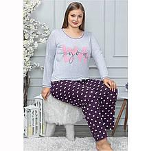 Піжама жіноча бавовняна з брюками великого розміру LoveYou Seyko2XL-4XL