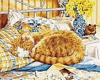 Картина рисование по номерам Brushme Котик-сонько GX34054 40х50см     BK-GX34054 40x50см 40x50смнабір для