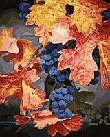 Картина рисование по номерам Brushme Осенний виноград GX30208 40х50см       40x50см  BK-GX30208 40x50см набор