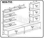 Гостиная Бокс ТВ5 ( Box tv.5 ), фото 2