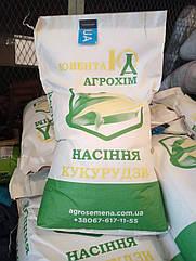 Семена кукурузы ДБ Хотин (ФАО 280) -ТОП ПРОДАЖ!!!