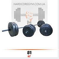 Штанга (2 м) + гантели (45 см) | 81 кг