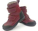 Черевики ортопедичні зимові Ecoby 377М р. 23-40, фото 2