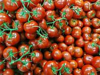 Семена томата черри Ахико F1 (1000 семян) Агри-Заатен