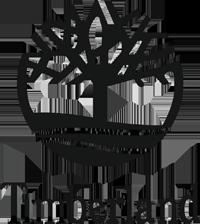 Черевики Timberland