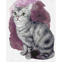 Картины по номерам - Маленький котенок (КНО4187) (кот, кошка, серый кот)