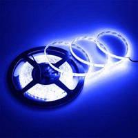 Светодиодная лента SMD 2835 120 диодов на метр IP33 синяя (715)