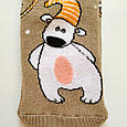 Махрові шкарпетки жіночі бежеві з ведмедиком 35-41 розмір, фото 2