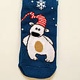 Теплые махровые носки женские бирюзовые с мишкой 35-41 размер, фото 2