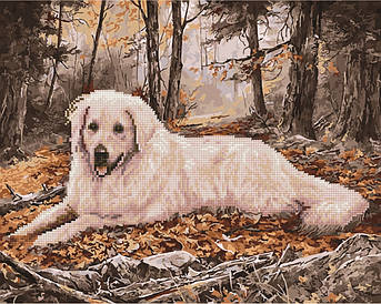 Алмазна картина Мисливська собака (GZS1059) 40 х 50 см (Без коробки)