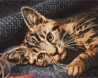 Алмазна картина Бенгальська кішка (GZS1038) 40 х 50 см (Без коробки)