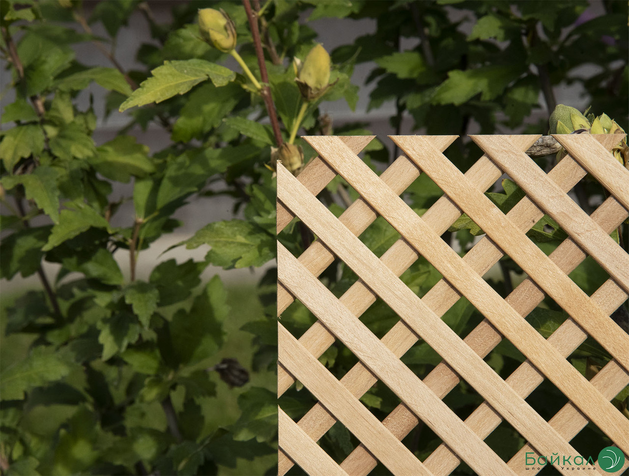 Деревянная декоративная решетка — 3P (Ольха, Бук, Клен, Ясень, Дуб)