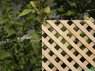 Дерев'яна декоративна решітка — 3P (Вільха, Бук, Клен, Ясень, Дуб)