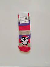 Теплі зимові шкарпетки махрові з принтом 🐧 пінгвін красиві розмір 36-41 рожевий
