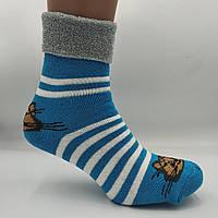 Шкарпетки жіночі махра відворот котики асорті, фото 1
