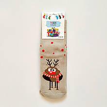 Махрові зимові теплі шкарпетки жіночі з оленем розмір 36-41 бежеві 3