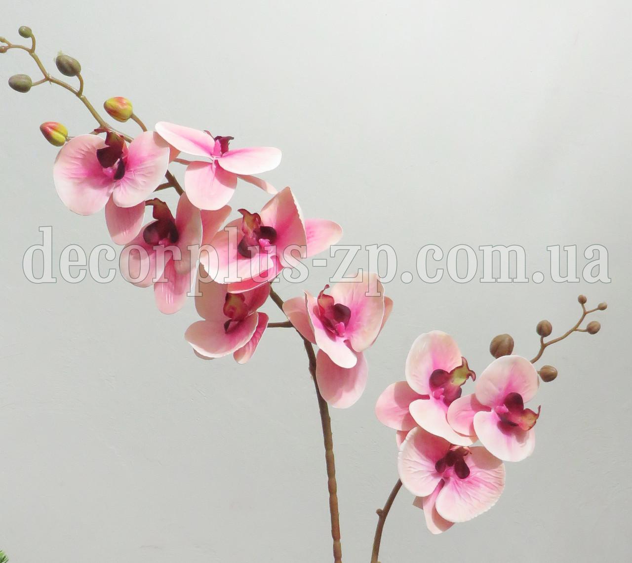 Ветка орхидеи латекс двойная, розово-кремовая