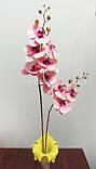 Ветка орхидеи латекс двойная, розово-кремовая, фото 2