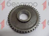 240-1005033-А-01 Шестерня Д243,Д245 привода масляного насоса, большая, z=42, (А)