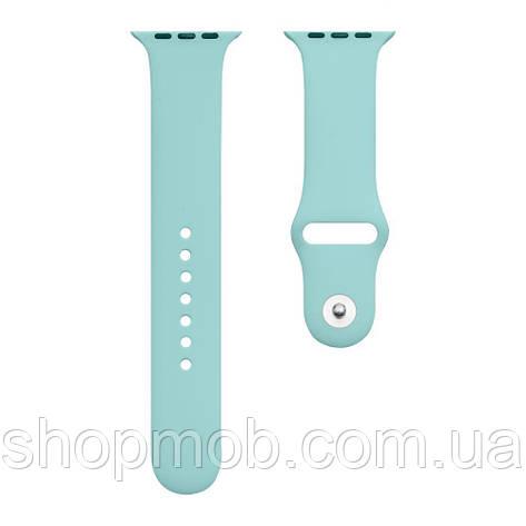Ремешок Apple Watch Band Silicone One-Piece 42 / 44mm Цвет 47, фото 2