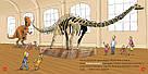 Моя перша Енциклопедія DOCs. Динозаври, фото 4