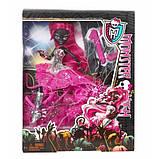 Monster High Кэтти Нуар Монстр Хай Catty Noir Basic Doll, фото 3